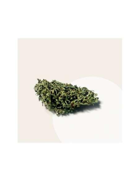 Fleur CBD Thérapie Lemon 6% 5g | CBD & Chanvre