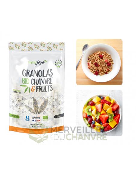 Granola bio chanvre & fruits 300g | CBD & Chanvre