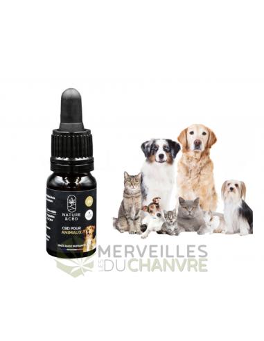 Huile CBD 5% 10ml animaux | CBD & Chanvre