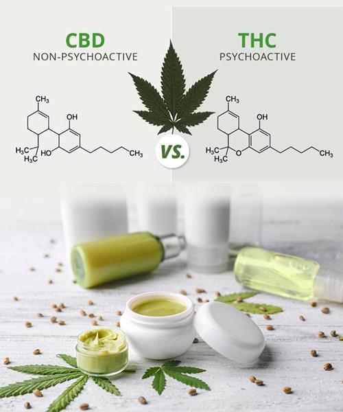 THC ou CBD